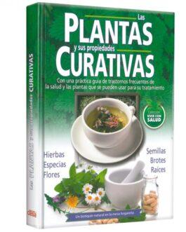 Las Plantas Curativas Y Sus Propiedades Curativas