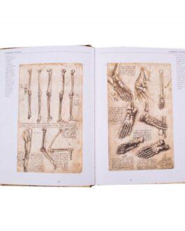 Leonardo Da Vinci, Anatomía y Vuelo
