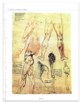 Leonardo Un Genio Universal