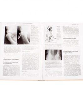 Manual De Alteraciones Musculoesqueléticas
