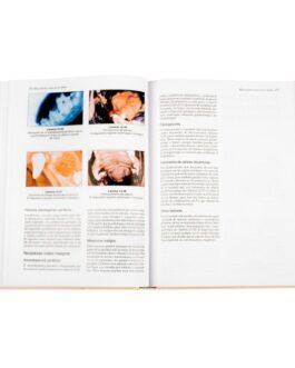 Manual De Odontología En Pequeños Animales