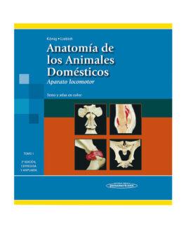 Anatomia de los Animales Domesticos Tomo 1